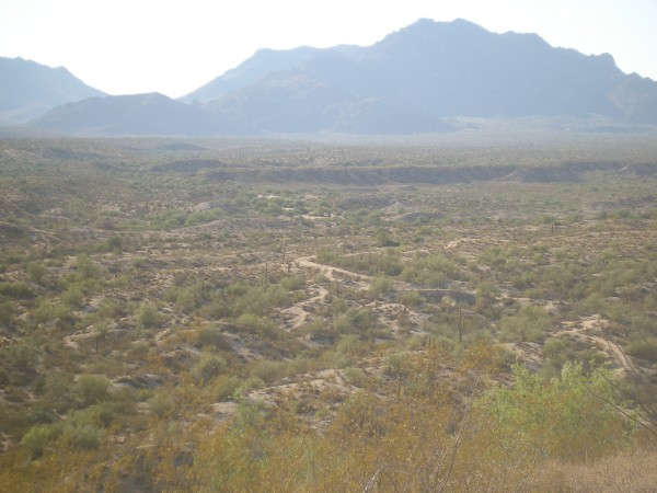 McDowell Mountain Park