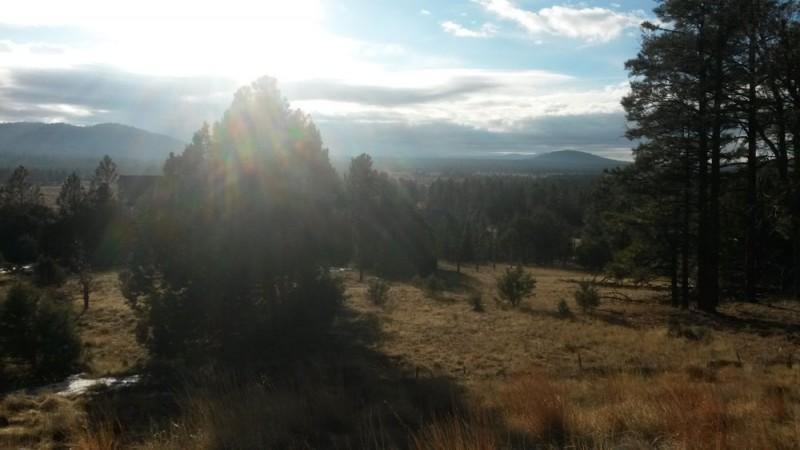 White Mountains Pinetop