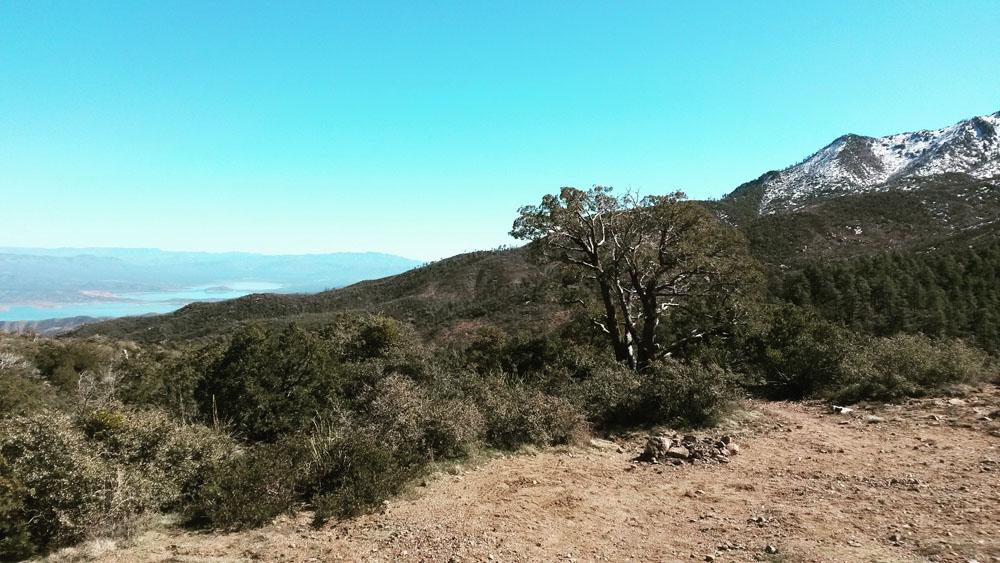 Top of Four Peaks