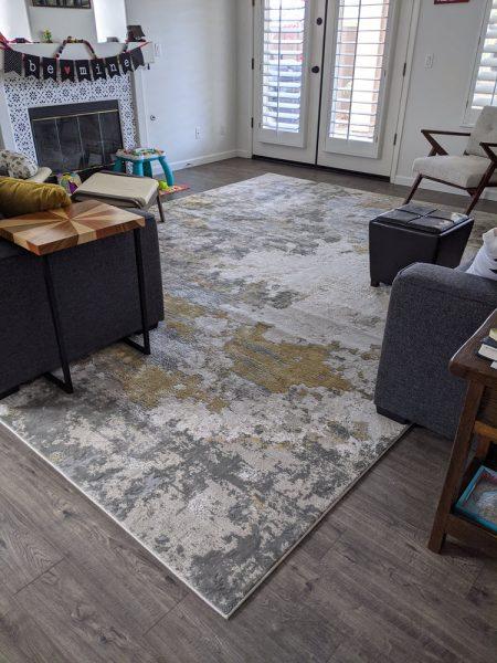 We finally got a rug for the living room.