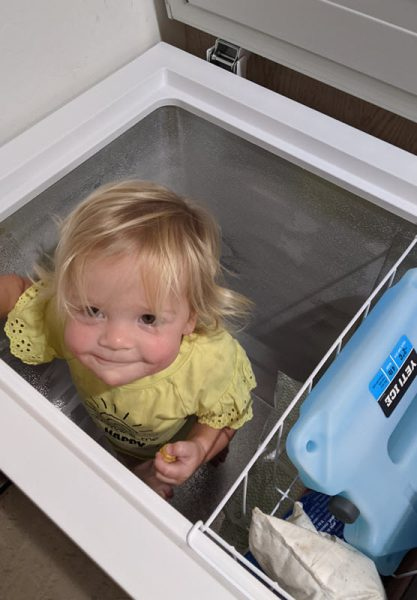 Mattie cooling off in our our deep freezer